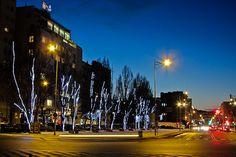 Gdyńska iluminacja świąteczna na Skwerze Kościuszki / Christmas lights in Gdynia, Kościuszki Square | fot. Marcin Kostrzyński | #christmas #iluminacja #gdynia