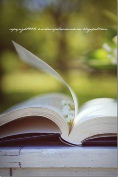 książka w ogrodzie (2)