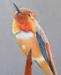 Creative Illustration, Pencil Illustration, Pencil Art, Pencil Drawings, Great Words, Pet Birds, Creative Art, Artworks, Twitter
