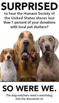 Support your local shelter not HSUS!