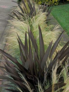 Grass gardening