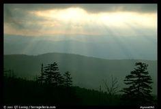 North Carolina. Great Smoky Mountains National Park, USA.