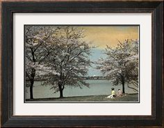 Two Women Sit by a Waterfront Framed by Cherry Blossoms Photographic Print by Clifton R. Adams at Art.com