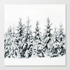 Snow Porn Canvas Print