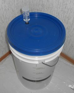 The first fermentation