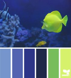 UnderwaterHues_4 possible color combos that could work in office