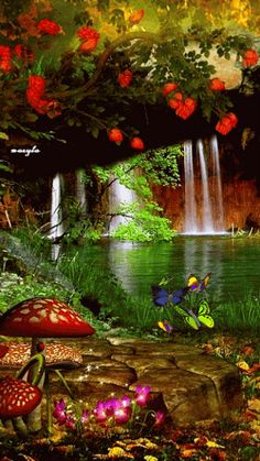 The perfect Waterfalls Falls Butterflies Animated GIF for your conversation. Discover and Share the best GIFs on Tenor. Beautiful Nature Wallpaper, Beautiful Gif, Beautiful Landscapes, Beautiful Flowers, Beautiful Places, Amazing Places, Gif Pictures, Nature Pictures, Pretty Pictures