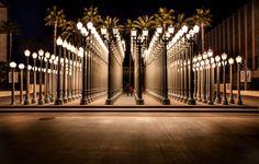 Image result for Urban Lights