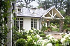 windows + landscaping