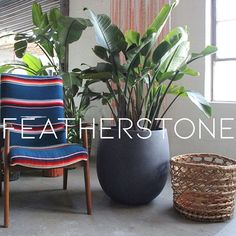 For our FeatherStone Urban collection, we were going for smooth and simple. That's why these planters compliment any style of decor.