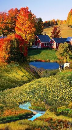 Autumn in the country . Fall Pictures, Fall Photos, Nature Pictures, Beautiful World, Beautiful Places, Beautiful Pictures, Beautiful Scenery, Landscape Photography, Nature Photography