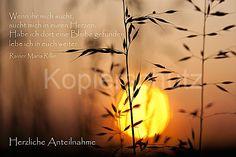 Gräser, Rilke, Trauer