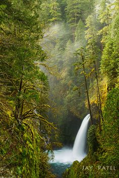 Here's a short video from Columbia River Gorge in Oregon. In this video we offer some simple tips for photographing waterfalls.