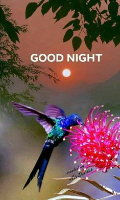 Good Night Greetings, Good Night Messages, Good Night Sweet Dreams, Good Night Moon, Good Night Image, Good Morning Good Night, Good Night Quotes, Good Morning Wishes, Night Time
