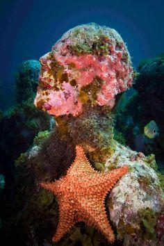 Esculturas subacuáticas