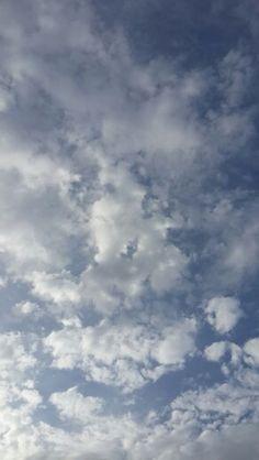 Mis nuvesss