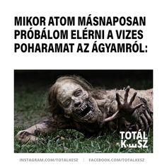 #viccek #vicceskép #viccesképek #humoroskepek #poén #poénos #mém #mémek #magyarmeme #magyarmemek #hülyeség #hülyeségek #nevetés #nevess #másnap #hétvége Lol, Movies, Movie Posters, 2016 Movies, Film Poster, Cinema, Films, Movie, Film Posters