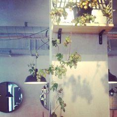 Hops Food & Brews Hops bar, Gotheburg Sweden Scandinavian wabi-sabi Interior Designer: Benedicte Boutou