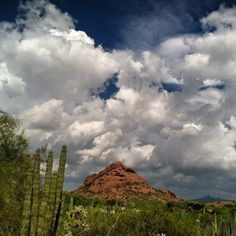 View from the top of Sonoran Desert Nature Loop Trail after major rain storm the day before.