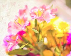 kitchen, bathroom?  Spring Dreams soft and dreamy, sun drenched pink and yellow flowers, butterflies, 8 x 10 fine art photo