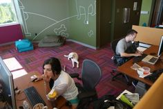 Salesforce dog friendly office - Get Leashed Mag