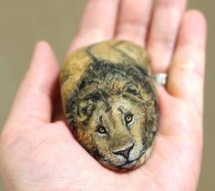 Artist Paints And Transforms Stones Into Realistic Tiny Animals You Can Hold In Your Hand Painted Rock Animals, Painted Rocks Kids, Painted Stones, Rock Painting Ideas Easy, Rock Painting Designs, Artist Painting, Stone Painting, Art Pierre, Pet Rocks