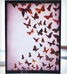 You Give Me Butterflies Card - Pack of 10 by Glak Love on Scoutmob Shoppe