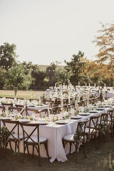 shaun menary; winding ridge b&b; GRO Designs; texas wedding; outdoor reception; feasting tables; white and green decor; wooden cafe chairs with white cushions; string lights;