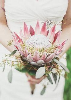 vintage protea bouquet / Florals for Wedding on imgfave Floral Wedding, Wedding Bouquets, Wedding Flowers, Wedding Table, Our Wedding, Dream Wedding, Wedding Ideas, Protea Bouquet, Safari Wedding