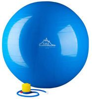 Black Mountain Products Exercise Stability Ball with Pump Blue 55cm-55 cm 1 Each
