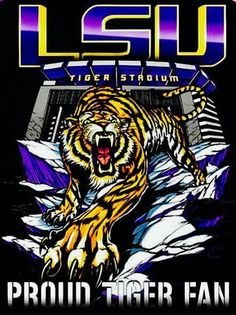 Lsu Tigers Football, Tigers Game, Nfl Football Teams, Football Memes, College Football, Sports Teams, Football Season, Death Valley Lsu, Fight Tiger