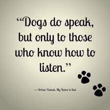 #dogs do speak, beautiful dog #quote