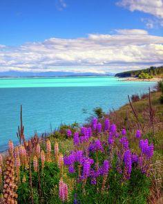 ✯ Late Afternoon At Lake Pukaki