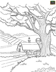 Farm barn and cows Coloring pages colouring adult detailed