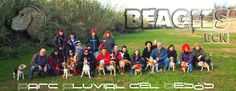 Cúper / Beagles BCN