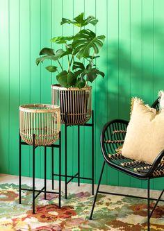 Rattan, Planters, Lounge, Table, Interiors, Furniture, Google Search, Home Decor, Wicker
