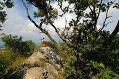 Da Monte Mauro al Parco del Carnè | Flickr – Condivisione di foto!