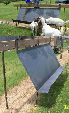 Perfect sheep amd goat feeder!!