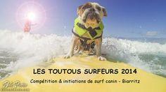 Biarritz accueillera la première compétition européenne de «surf chien» au mois de septembre !   SurfingBiarritz.fr