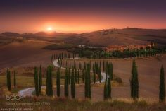 Tuscany by Rostov #nature #travel #traveling #vacation #visiting #trip #holiday #tourism #tourist #photooftheday #amazing #picoftheday