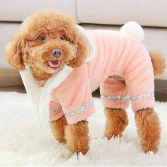 Plush four-legged clothes for dogs in 4 sizes – TheCatandPooch Four Legged, Plush, Fall Winter, Teddy Bear, Dogs, Pattern, Clothing, Animals, Clothes