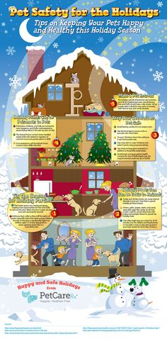Pet Safety for the Holidays