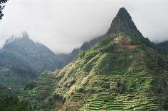 VALE DA SERRA DE ÁGUA :: GOLD ISLAND TRAVEL, - ilha da Madeira - Portugal