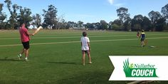 The Nullabor Couch turf variety from Coolabah Turf is perfect for professional turf environments and community facilities. Grown on our farm in Echuca! Instant Turf, Sports Turf, Farm Gate, Golf Green, Things That Bounce, Environment, Backyard, Hero, Couch