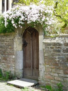 Always find an old wooden door surrounded by stone and draped with foliage, romantic. #doors #design