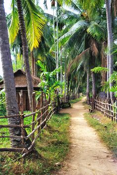 #Laos  Discover with #Steppes http://www.steppestravel.co.uk/destinations/far+east/laos/