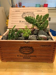 Cigar box full of succulents and cactus!