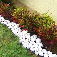 landscaping – Gardening Ideas, Tips & Techniques Front Yard Garden Design, Small Front Yard Landscaping, Flower Garden Design, Small Garden Design, Tropical Landscaping, Landscaping Tips, Tropical Garden, Lawn And Garden, Garden Landscaping