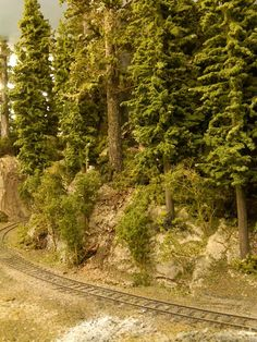Track is @ inches from backdrop - N Scale Trains, Ho Trains, Model Trains, Ho Train Layouts, Model Railway Track Plans, Trains For Sale, Model Tree, Train Pictures, Military Diorama