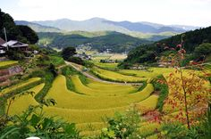 pictures of countryside in japan | Japanese Countryside